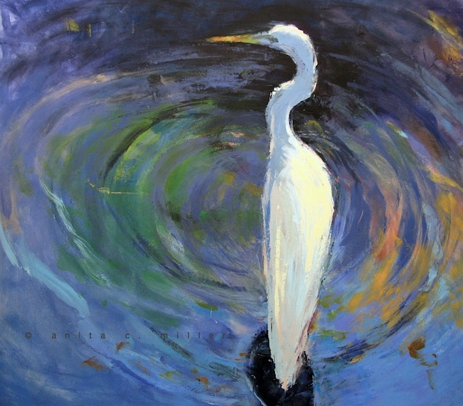 white heron