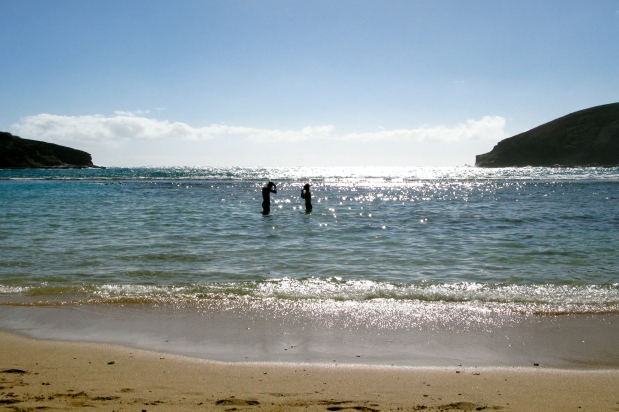 Hanauma Bay snorkelers