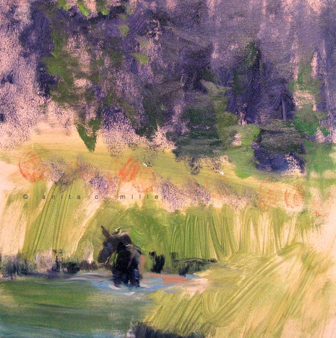 wilderness 3 (moose)