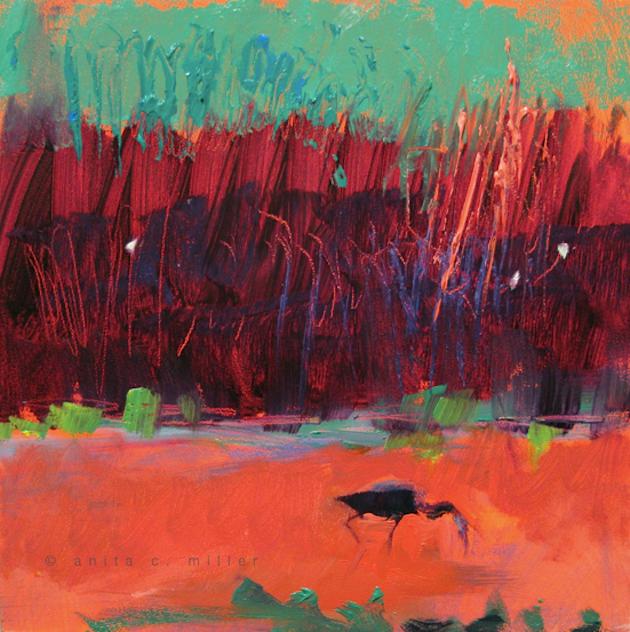 wild wetland 2