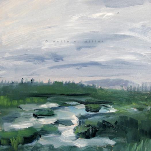 wild wetland